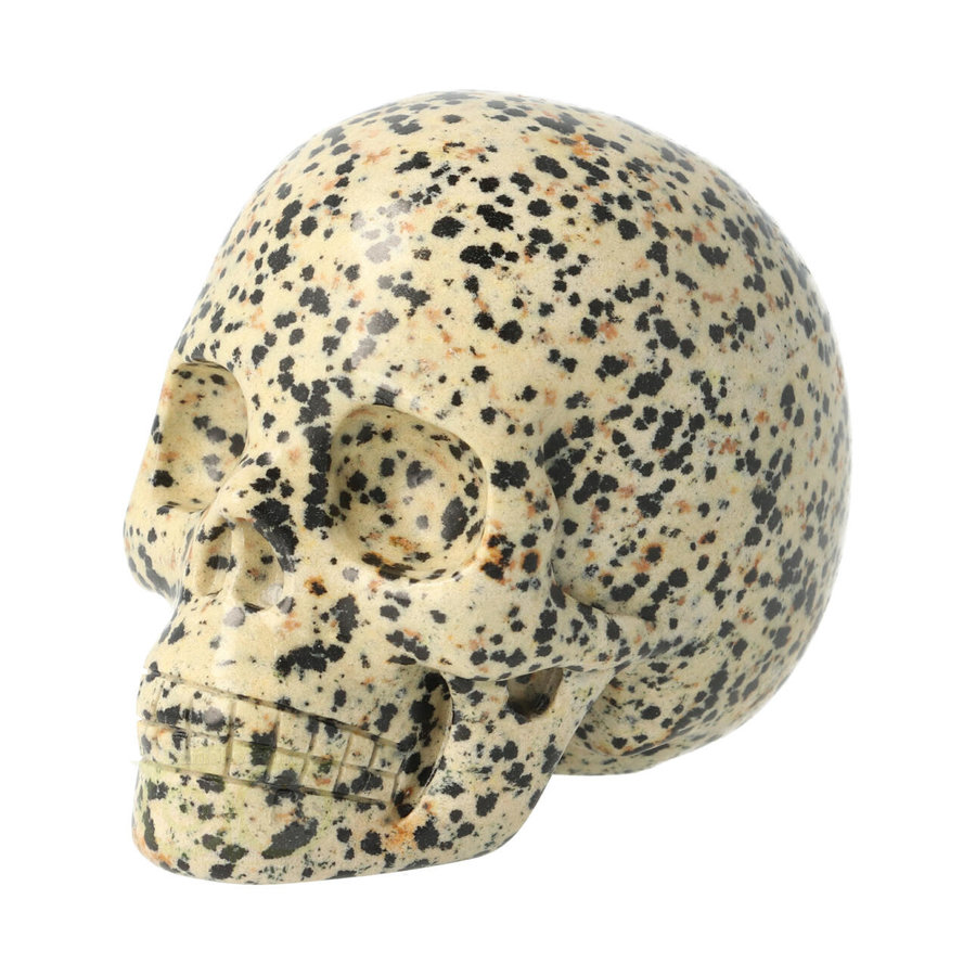 Dalmatiër Jaspis Schedel 323 gram-3