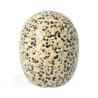 thumb-Dalmatiër Jaspis Schedel 323 gram-7