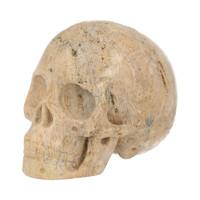 thumb-Fossiel Koraal Schedel 324 gram-4
