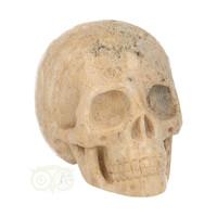 thumb-Fossiel Koraal Schedel 324 gram-2