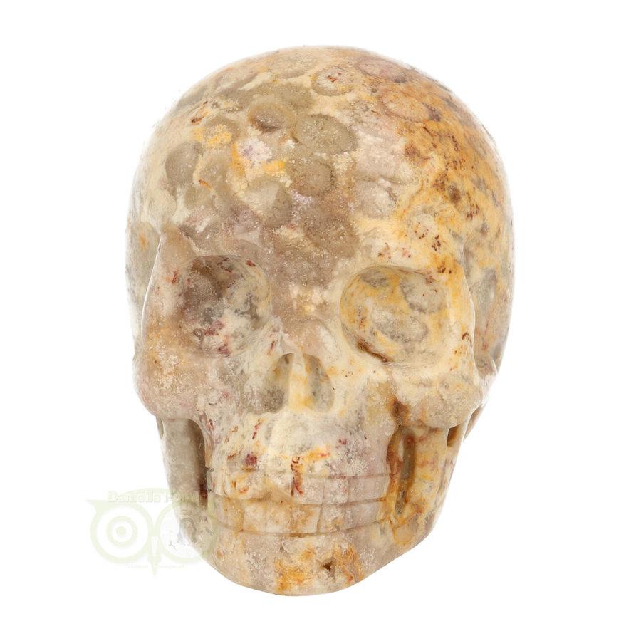 Fossiel Koraal Schedel 320 gram-2