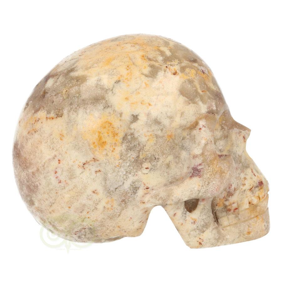 Fossiel Koraal Schedel 320 gram-8
