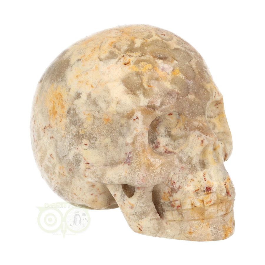 Fossiel Koraal Schedel 320 gram-9
