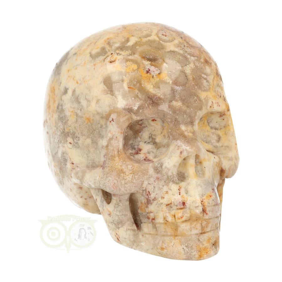 Fossiel Koraal Schedel 320 gram-10