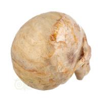 thumb-Fossiele koraal kristal schedel XL 614 gram-8