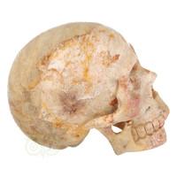 thumb-Fossiele koraal kristal schedel XL 614 gram-9