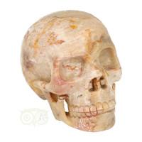 thumb-Fossiele koraal kristal schedel XL 614 gram-1