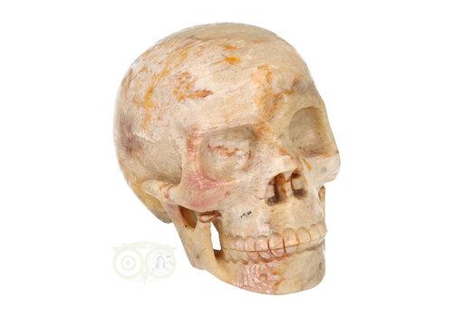 Fossiele kristallen schedel XL 614 gram