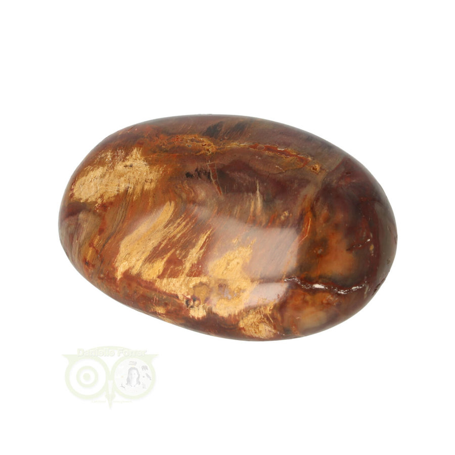 Versteend hout handsteen Nr 26 - 53 gram - Madagaskar-3