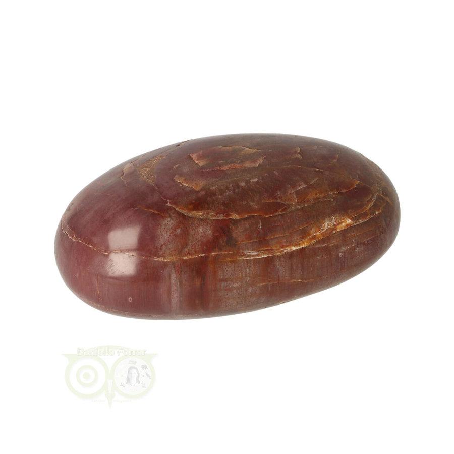 Versteend hout handsteen Nr 30 - 64 gram - Madagaskar-4