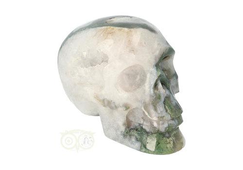 Mosagaat schedel 552 gram