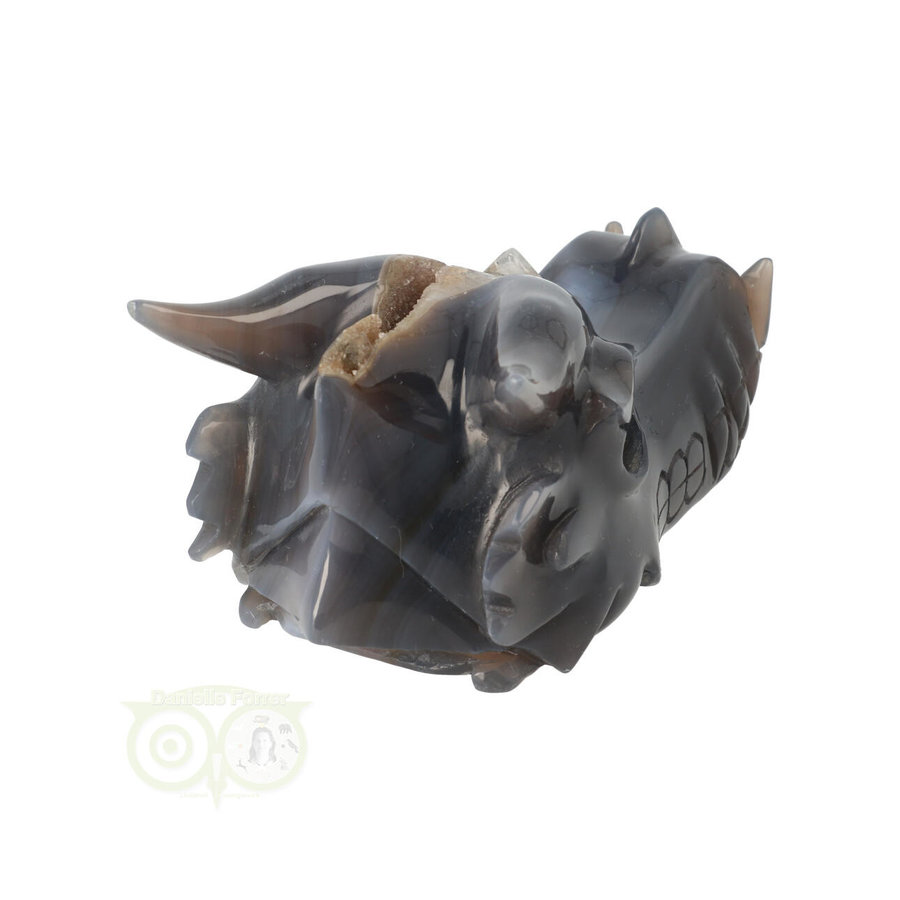 Agaat geode draken schedel 893 gram-8