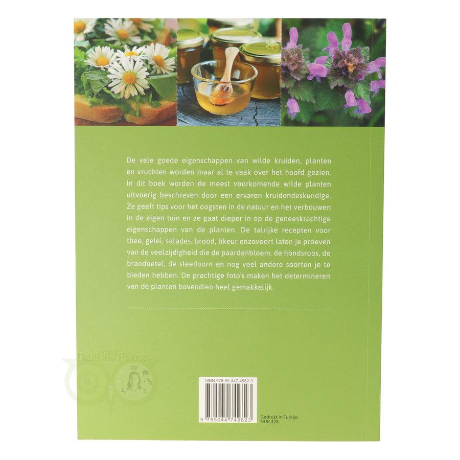 Eetbare wilde kruiden en planten - Monika Wurft-2