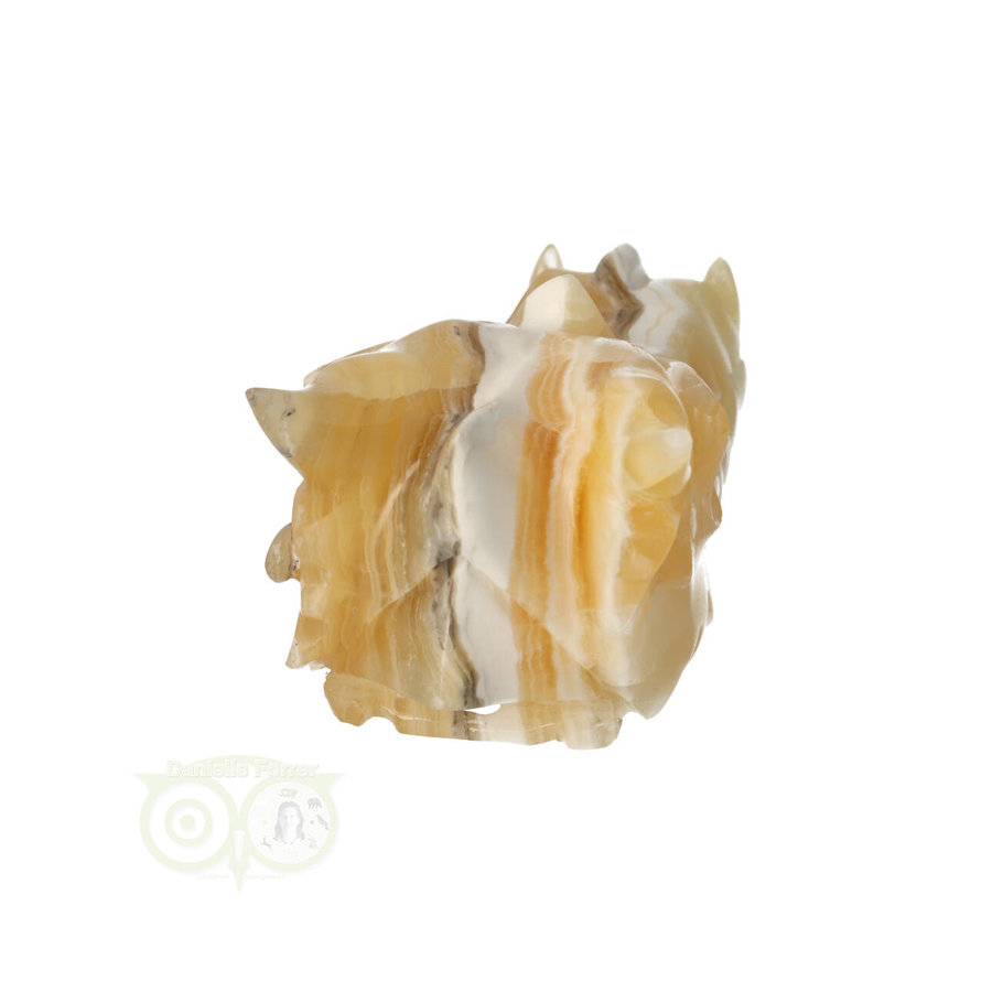 Calciet drakenschedel Nr 268 - 324 gram-7
