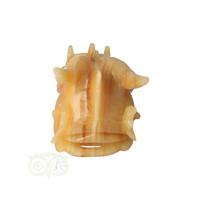thumb-Calciet drakenschedel Nr 269 - 782 gram-8