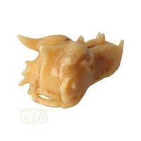 thumb-Calciet drakenschedel Nr 269 - 782 gram-9