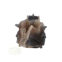 thumb-Agaat GEODE drakenschedel 456 gram-8