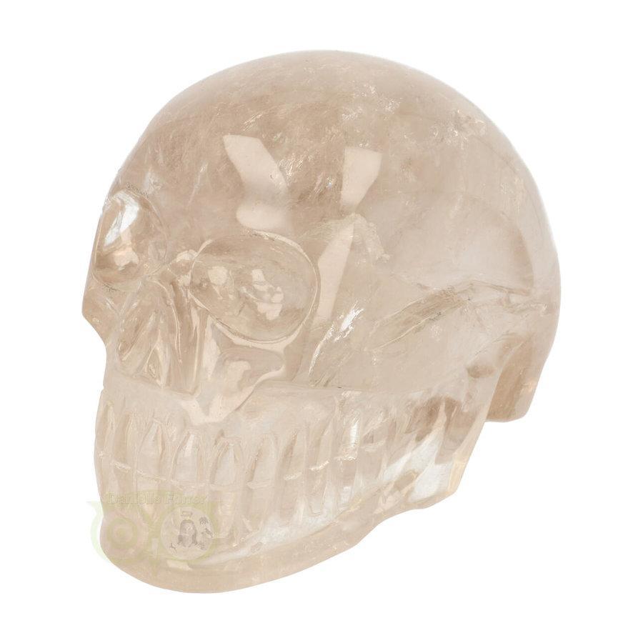 Bergkristal / Lichte rookkwarts schedel - Nr  222 - 3151 gram-1