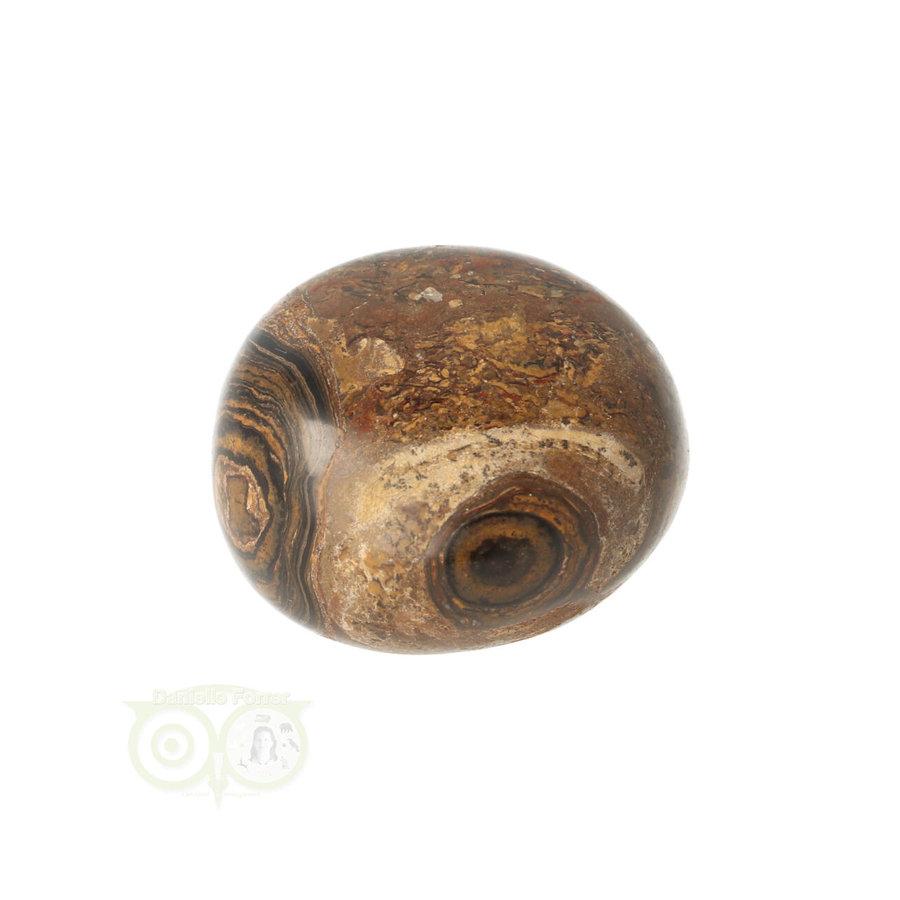 Stromatoliet Knuffelsteen Nr 13 - 29 gram-3