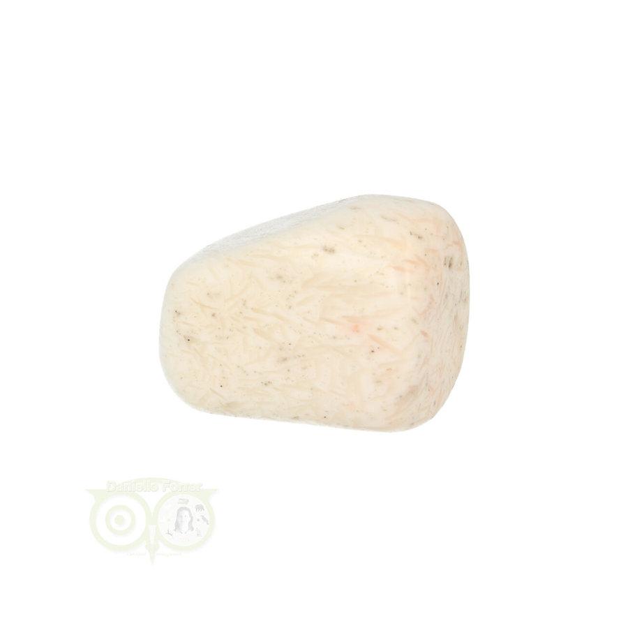 Scolesiet Knuffelsteen Nr 22 - 15 gram-2
