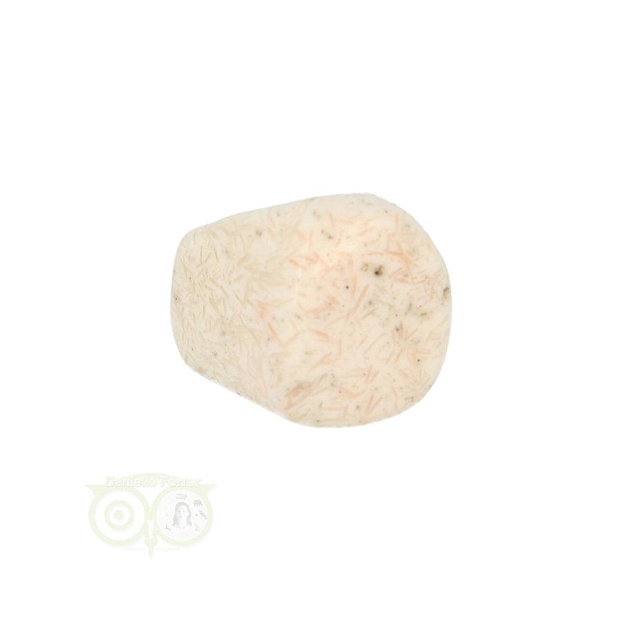 Scolesiet Knuffelsteen Nr 22 - 15 gram-3