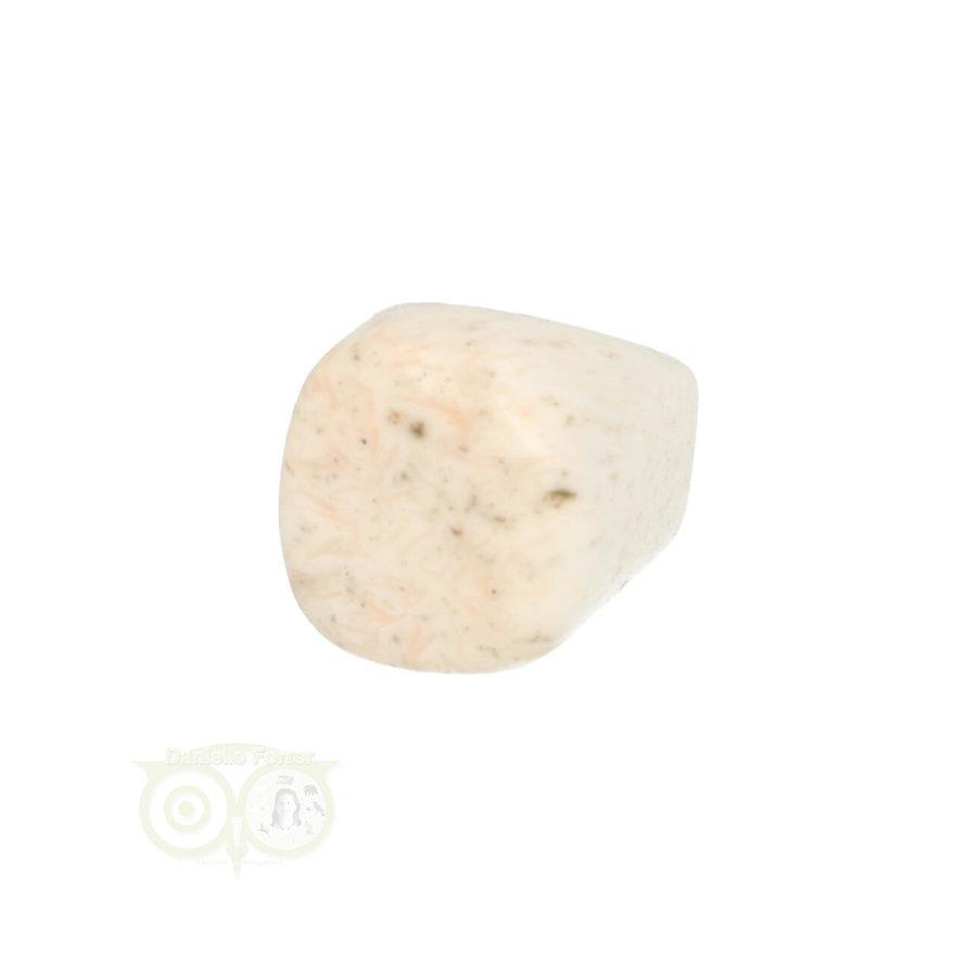 Scolesiet Knuffelsteen Nr 22 - 15 gram-4