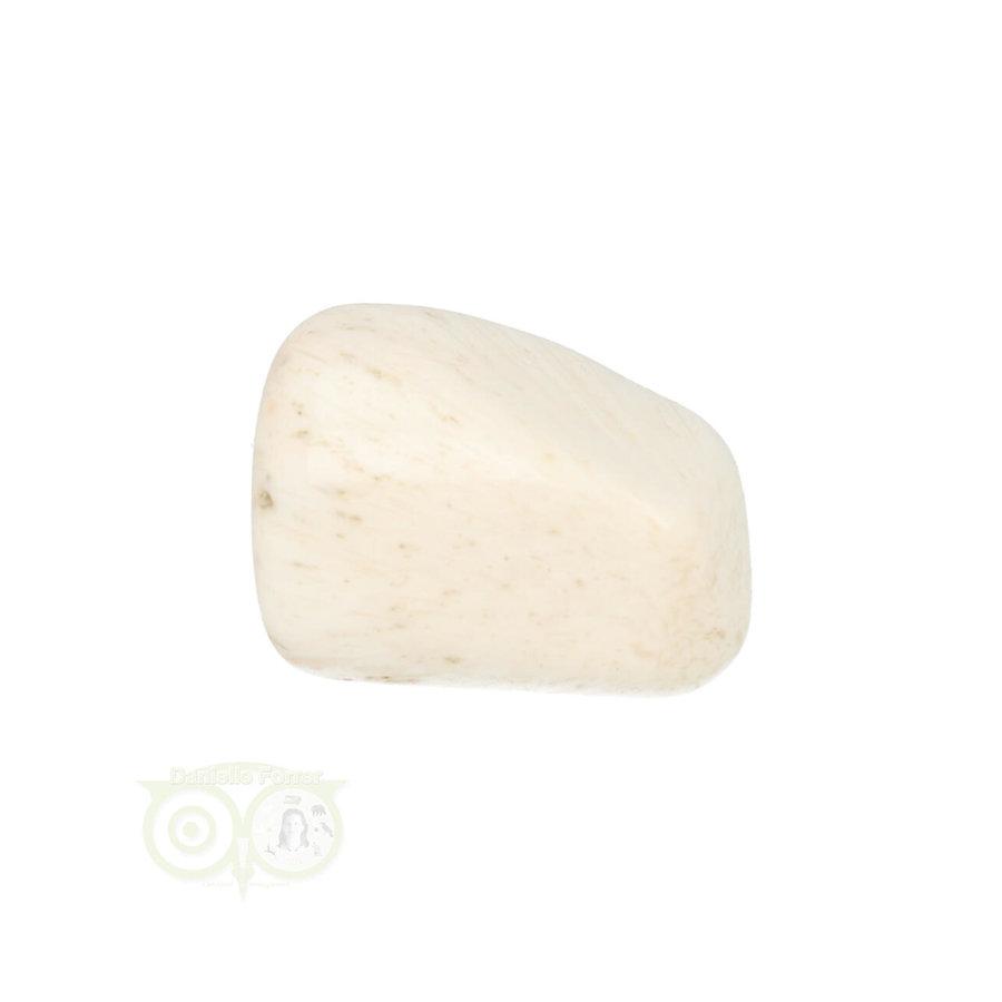 Scolesiet Knuffelsteen Nr 22 - 15 gram-6