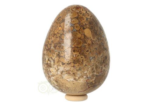 Jaspis Conglomeraat Ei Nr 2
