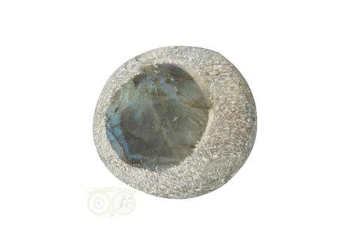 Labradoriet Ema Egg Nr 1