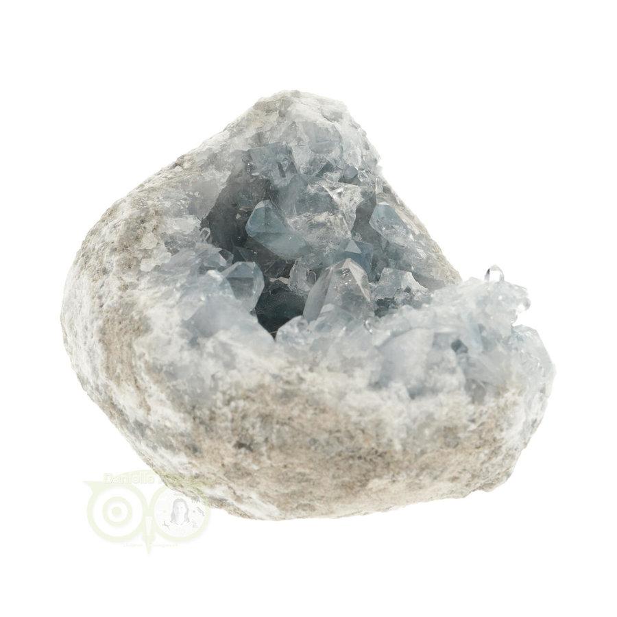 Celestien Cluster Nr 41 -992 gram - Madagaskar-7