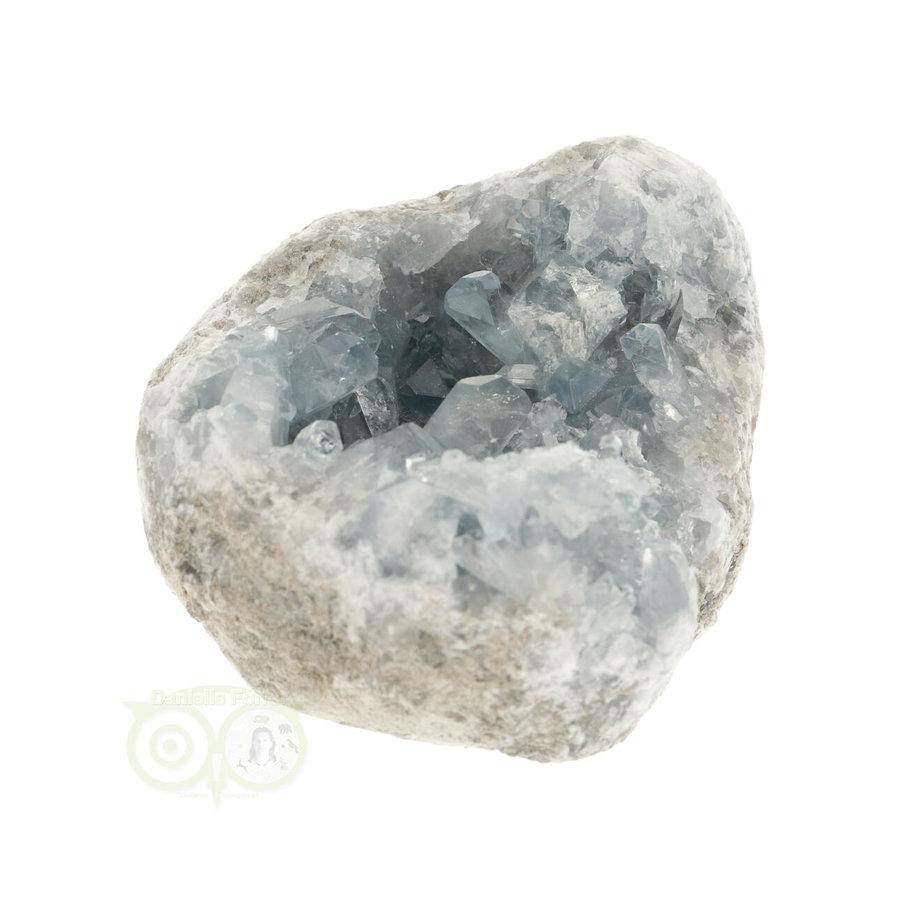 Celestien Cluster Nr 41 -992 gram - Madagaskar-8