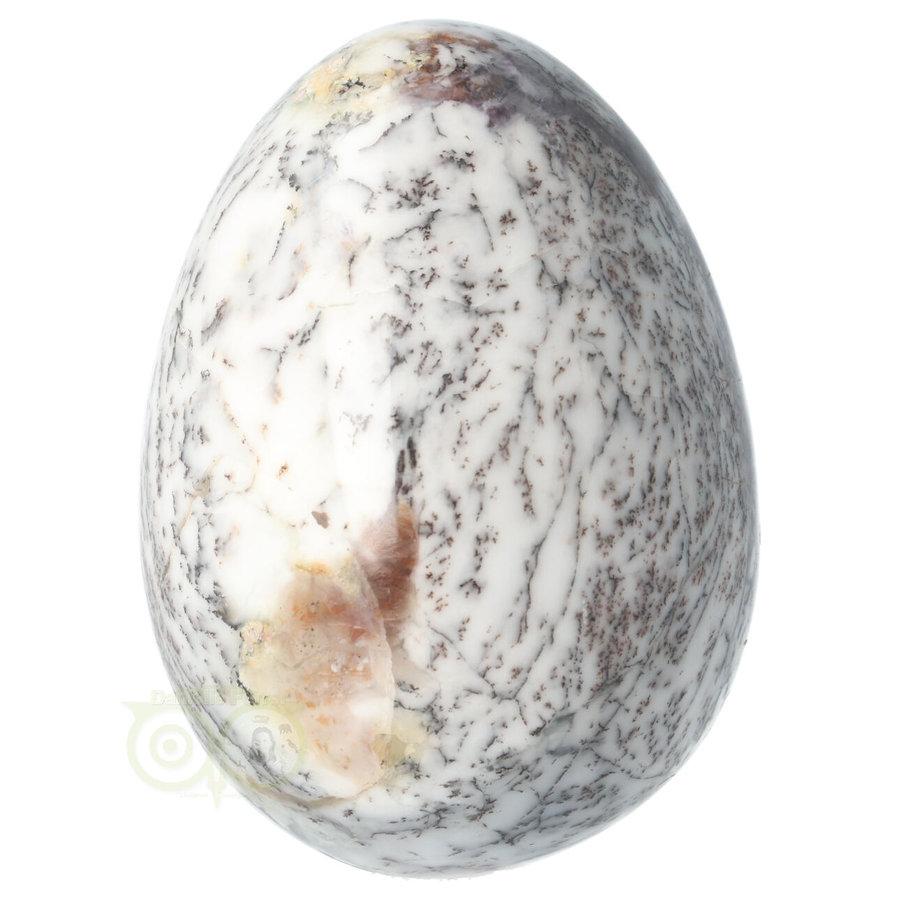 Dendriet Opaal- Agaat EI - 515 gram-7