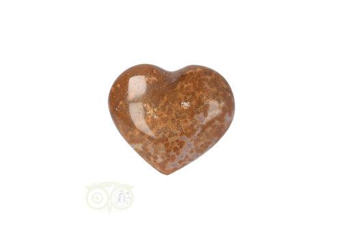 Oceaan Jaspis hart ± 3 cm Nr 12
