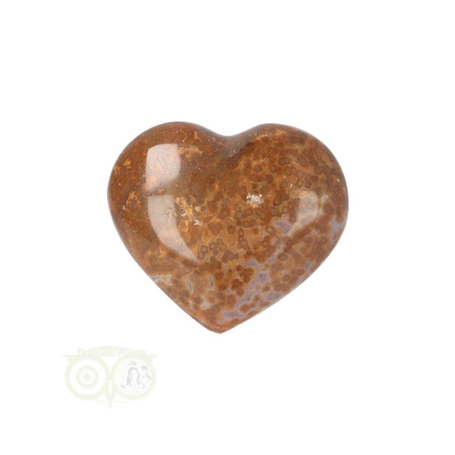 Oceaan Jaspis hart ± 3 cm Nr 12 - 18 gram-1