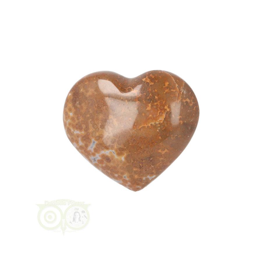 Oceaan Jaspis hart ± 3 cm Nr 12 - 18 gram-3