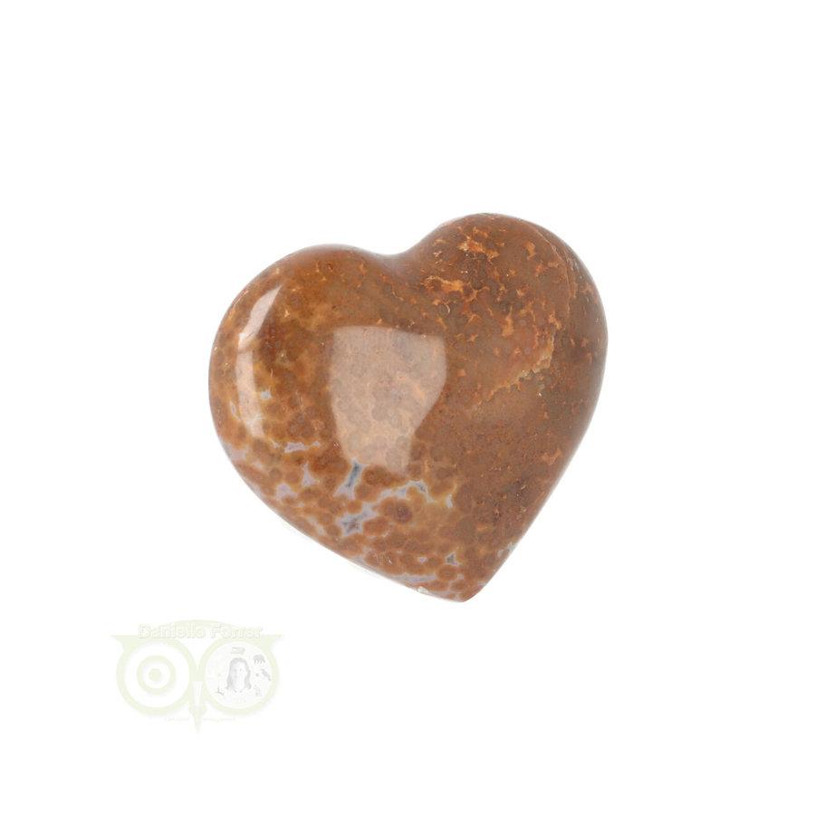 Oceaan Jaspis hart ± 3 cm Nr 12 - 18 gram-4