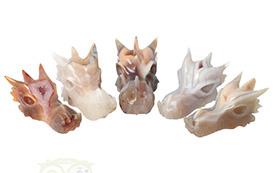 Binnenkort weer Nieuwe Collectie Drakenschedels & Kristallen schedels
