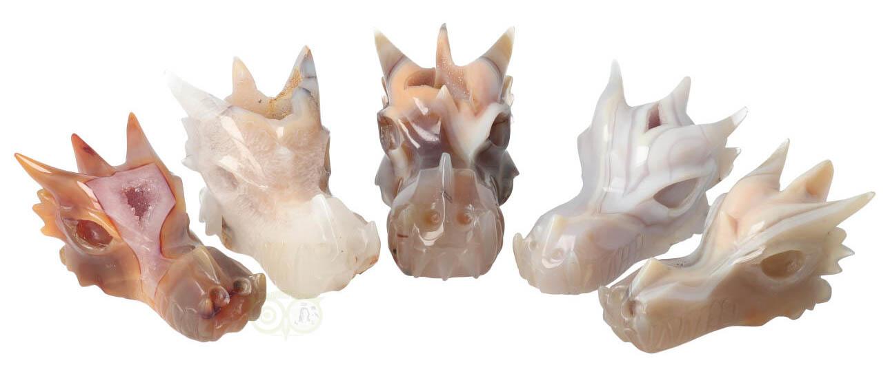 Nieuwe collectie Kristallen schedels & Drakenschedels | Kristallen schedels kopen | Drakenschedels kopen | Edelstenen webshop - Webshop Danielle Forrer