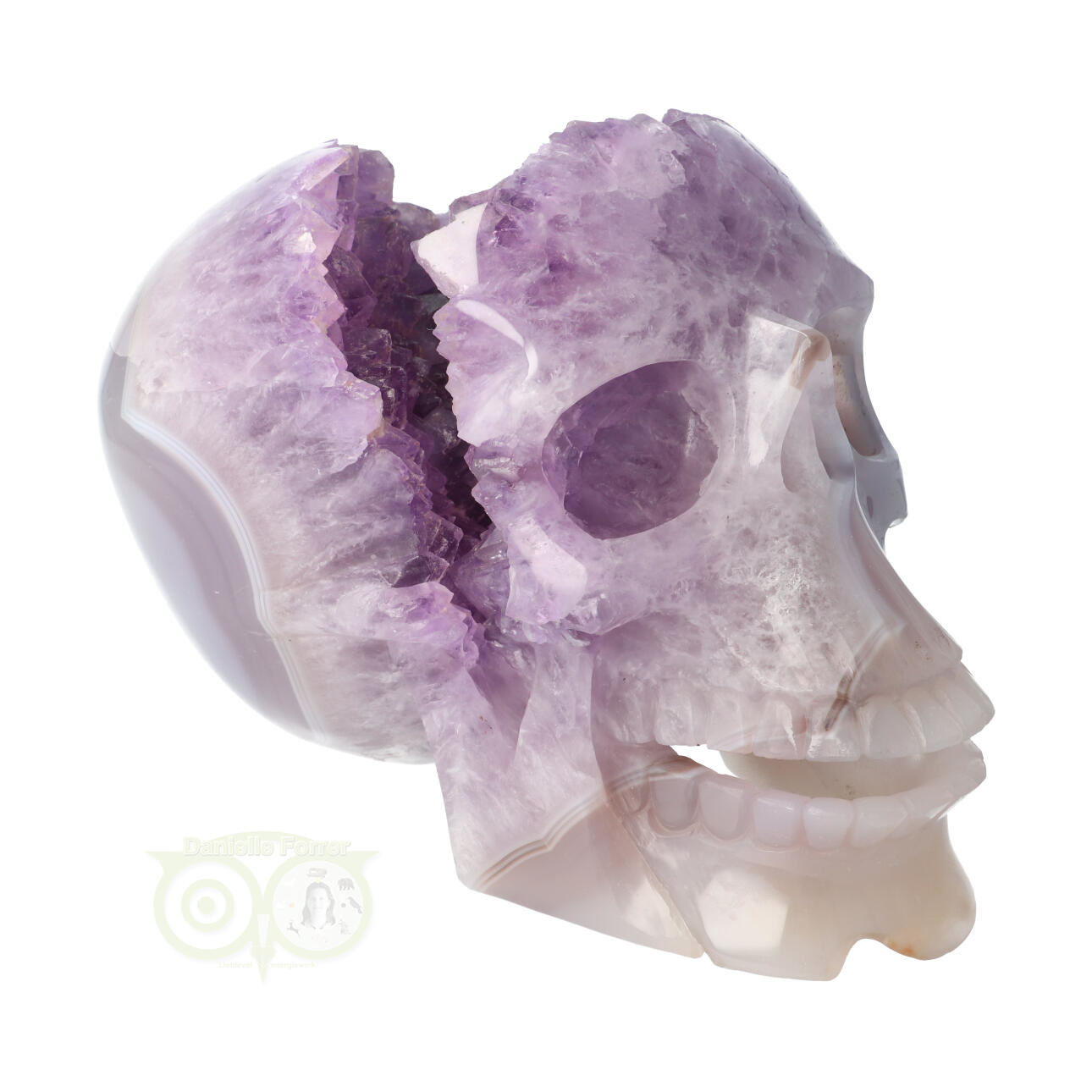 Amethist kristallen schedel | kristallen schedels kopen | Edelstenen Webwinkel - Webshop Danielle Forrer