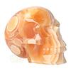 Oranje Calciet schedel 2015 gram