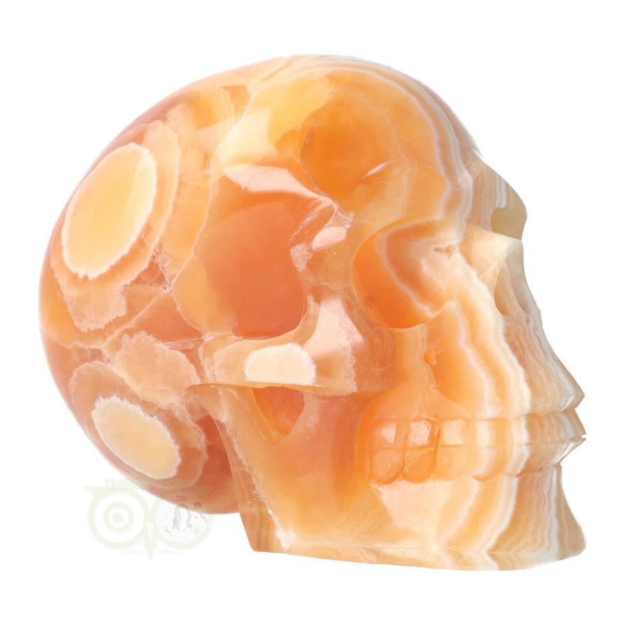 Oranje Calciet schedel 2015 gram-1