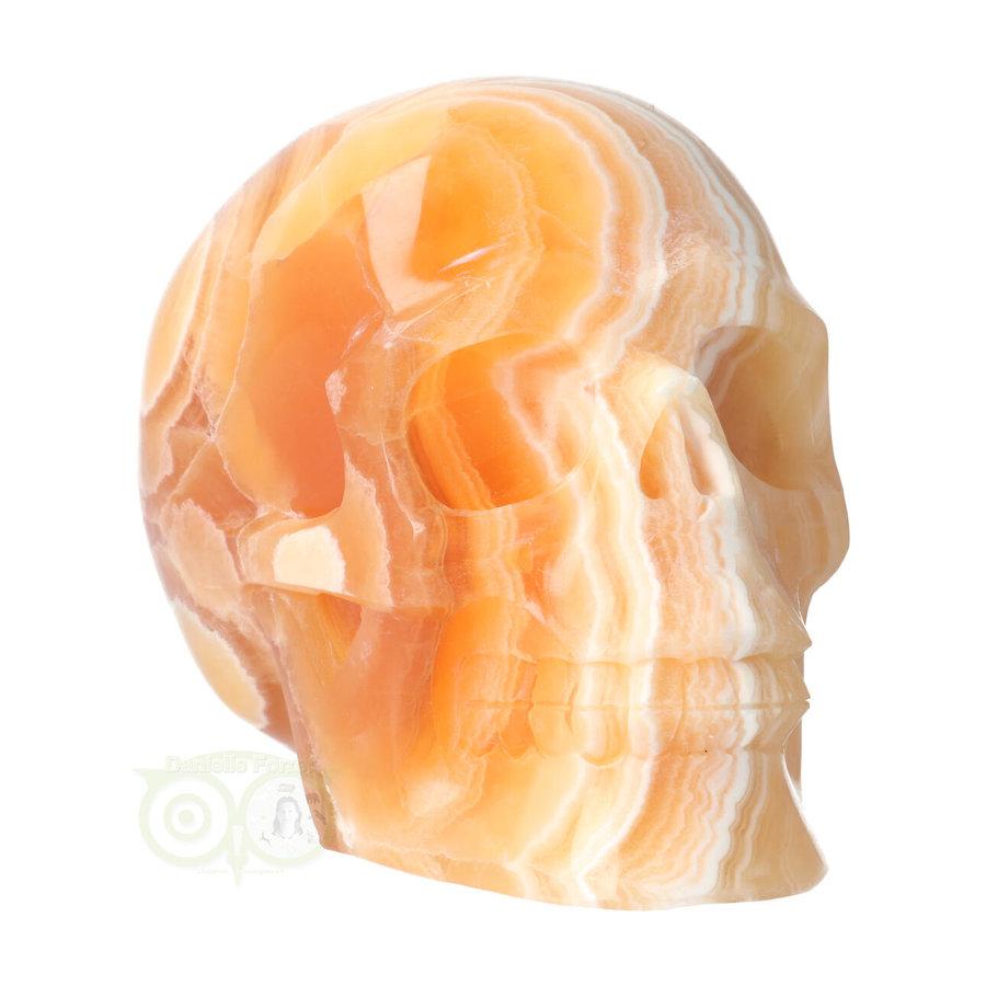 Oranje Calciet schedel 2015 gram-4