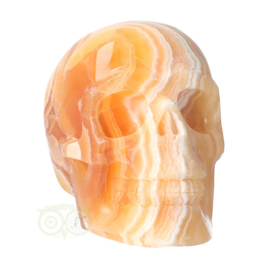 Oranje Calciet schedel 2015 gram-5