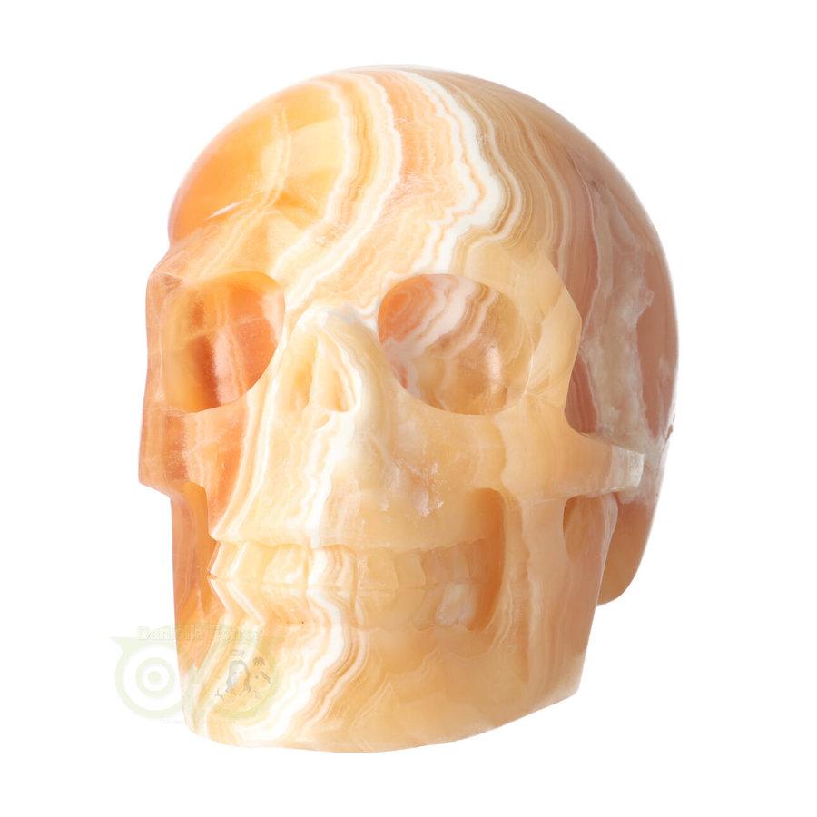 Oranje Calciet schedel 2015 gram-7
