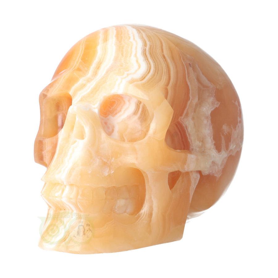 Oranje Calciet schedel 2015 gram-8