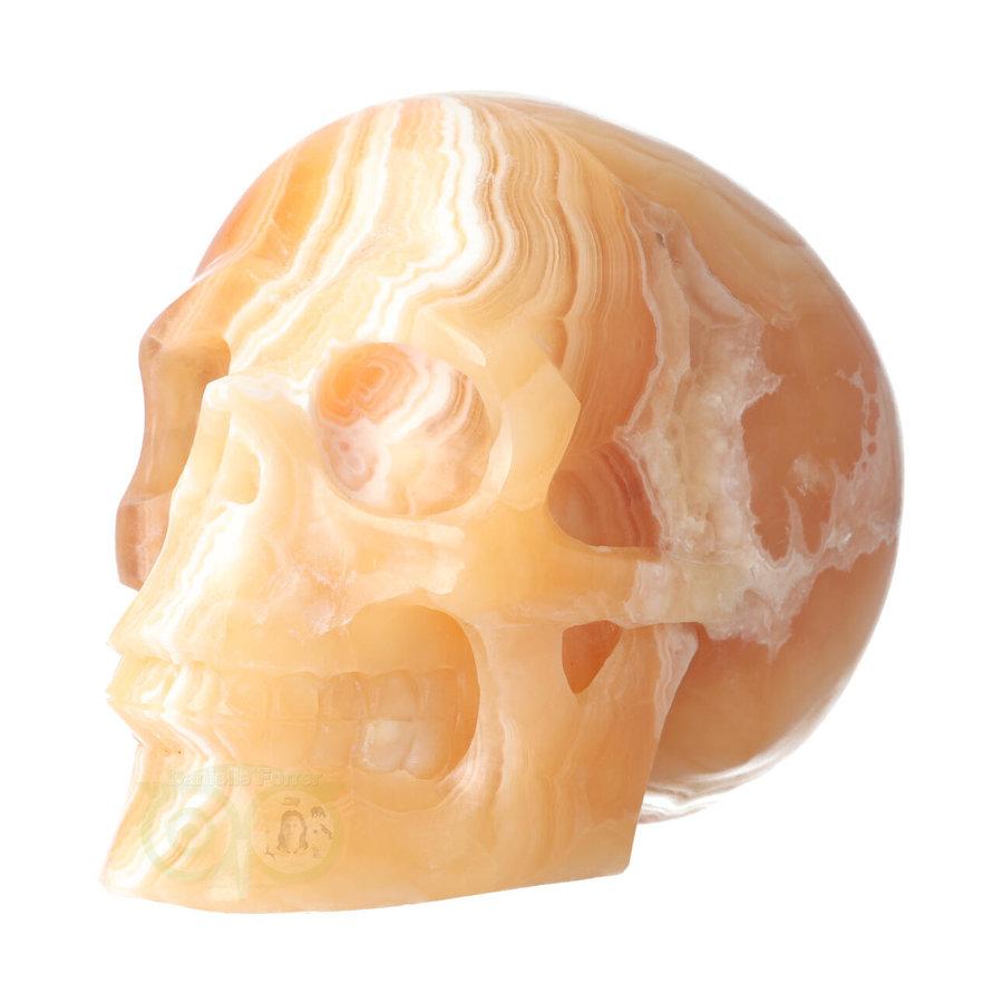 Oranje Calciet schedel 2015 gram-9