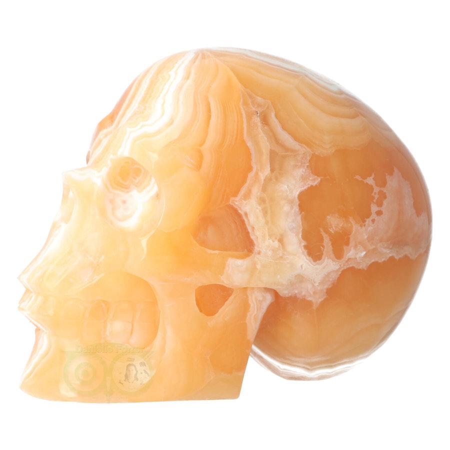 Oranje Calciet schedel 2015 gram-10