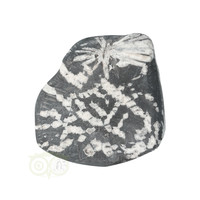 thumb-Chrysanthemum steen (Flower Stone) Nr 6 - 106 gram-2