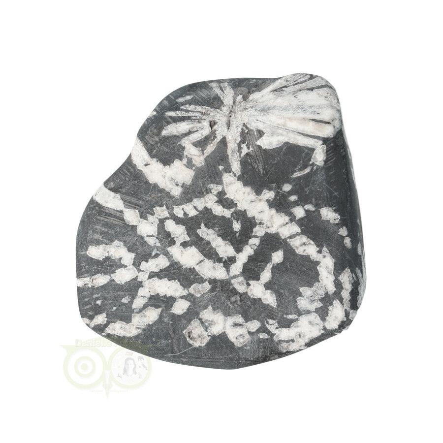 Chrysanthemum steen (Flower Stone) Nr 6 - 106 gram-2