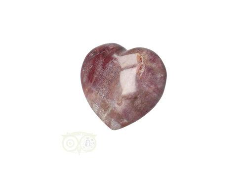 Versteend hout hart ± 3 cm  Nr 47